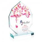 award_35307_l.jpg